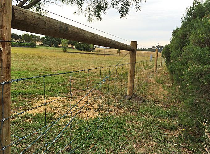 Rural-fencing-2