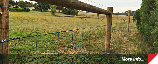 Farm Fencing in Gippsland